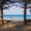 Baltic Sea — Stock Photo #41751423