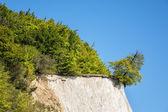 Chalk cliff — Stock Photo