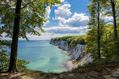 Chalk cliff — Stock Photo