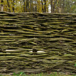 Stock Photo: Traditional lath fence around house in Ukraine