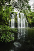 Llanos de Cortez Waterfall-Pond — Stock Photo
