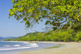 Playa Manzanillo Costa Rica — Stock Photo