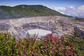 Main Crater-Poas Volcano  — Stock Photo