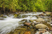 Rushing Mountain Stream — Stock Photo