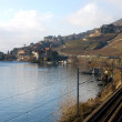 Railway by the Lake — Stock Photo #2242383
