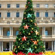Christmas Tree — Stock Photo #2641623
