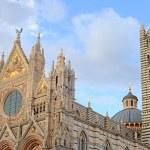 Duomo, siena — Stock Photo #19839667
