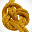 Apocryphal knot on double yellow rope. - Stock Photo