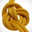 Apocryphal knot on double yellow rope. — Stock Photo #13904433