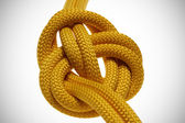 Apocryphal knot on double yellow rope. — Stock Photo