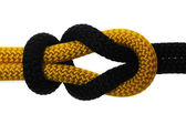 Academic knot of black and yellow rope — Stock Photo