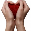 Love concept. holding a red heart in hands — Stock Photo