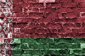 Běloruská vlajka — Stock fotografie