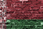 Flagge weißrussland — Stockfoto