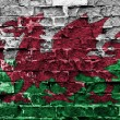 Wales flag — Stock Photo #33892293