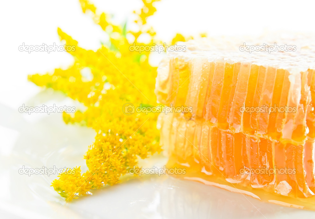 Sweet honeycomb with honey and yellow flower on a white background — Stock Photo #12878178