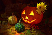 Still-life with pumpkins — Stock Photo