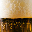 Beer glass with froth - Stock Photo