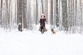 Walking in forest — Stock Photo