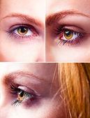 Yellow eye — Stock Photo