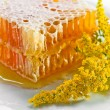 Sweet honeycomb with honey - Stock Photo
