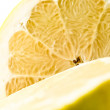 Ripe yellow grapefruit — Stock Photo