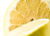 Ripe yellow grapefruit — Stock Photo