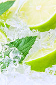 Lime and mint — Stock Photo