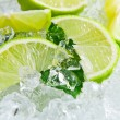Lime and mint — Stock Photo #27920361