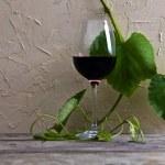 Стекло с красным вином — Стоковое фото #29261453