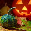 Still-life with pumpkins  — Stock Photo