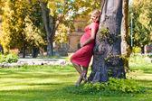 Jovem mulher grávida no parque — Fotografia Stock