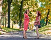 A mulher grávida fala para a namorada — Fotografia Stock