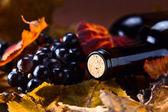 Garrafa com vinho — Foto Stock