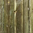 Old wooden wall — Stock Photo #39607537