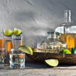 Stock Photo: Tequiland citrus fruits