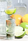Tequila and citrus fruits — Stock fotografie