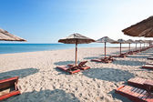 Sunbeds and parasols on the beach — Стоковое фото