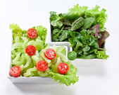 Bowl of mixed salad  — Stockfoto