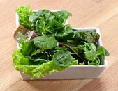 Gemischter salat — Stockfoto