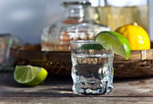 Tequila and citrus fruits  — Stok fotoğraf