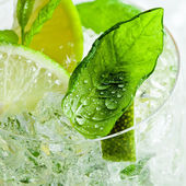 Lime pieces and leaves of mint  — Stock Photo
