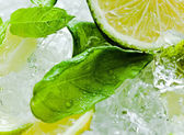 Lime pieces and leaves of mint with ice — Foto Stock