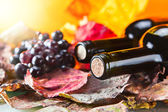 Bottle with wine — Stock Photo