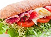 Sandwich with  salami  — Foto Stock
