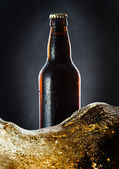 Frozen  beer bottle — Stock Photo