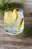 Gin with lemon and ice  — Stock Photo