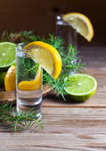 Gin with lemon — Stock Photo