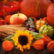 Thanksgiving — Stockfoto #13291909