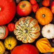 Thanksgiving background — Stockfoto